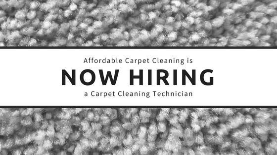 Carpet Cleaning Technician Jobs Review Home Co